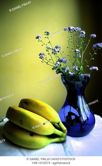 Still life - bananas, forget-me-nots and blue vase - by a window in London, England