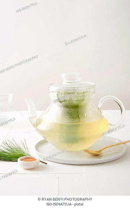 Still life of evergreen tea (pine tea) with organic honey