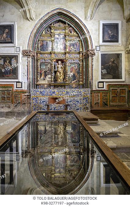 capilla de Santa Barbara, Catedral de la Asunción de la Virgen, Salamanca, comunidad autónoma de Castilla y León, Spain