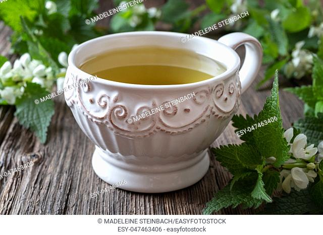 A vintage cup of white dead-nettle tea with fresh blooming Lamium album plant