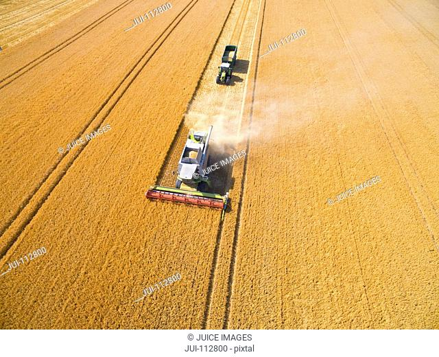 Aerial view of combine harvester and tractor trailer in sunny golden barley field