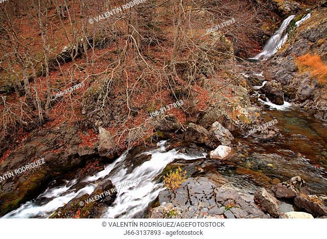 Brook in the Bujaruelo valley. Ordesa y Monte Perdido national park. Huesca