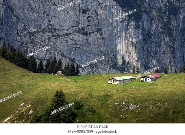 view from the Brauneck on Tennenalm in front of Probstenwand, Lenggries, Upper Bavaria, Bavaria, Germany
