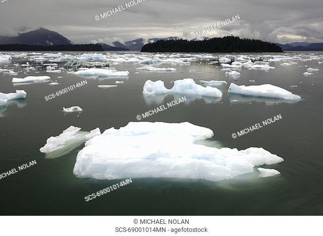 Calved icebergs and bergy bits fallen from the Le Conte Glacier in Le Conte Bay, Southeast Alaska, USA