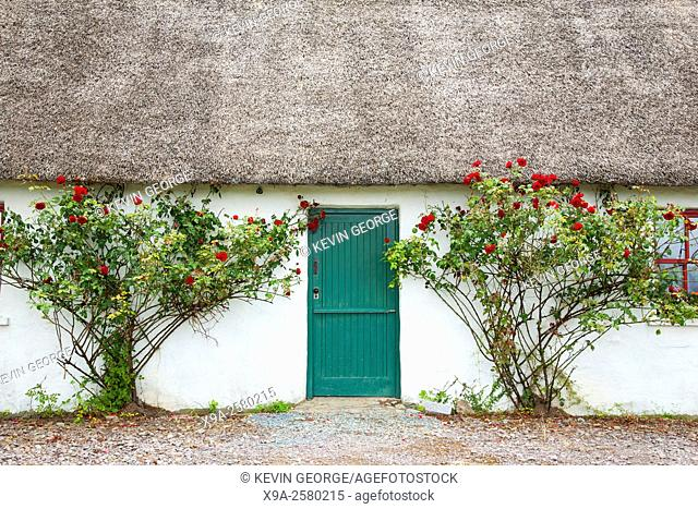 Rural House Entrance with Roses