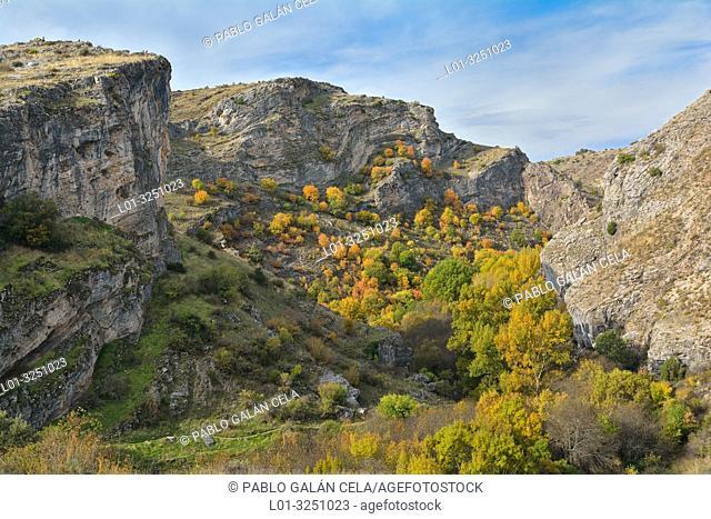 Autumn in the Parque natural del Barranco del Río Dulce, guadalajara province, Castile-La Mancha, Spain