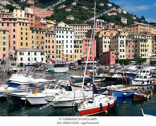 Italy, Liguria, Camogli, Port