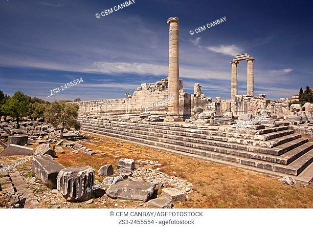 Temple of Apollo at the Archeological area of Didyma, Didim, Aydin Province, Turkey, Europe