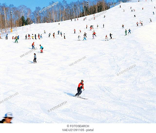 winter, landscape, snowscape, snow, mountain, ski, nature