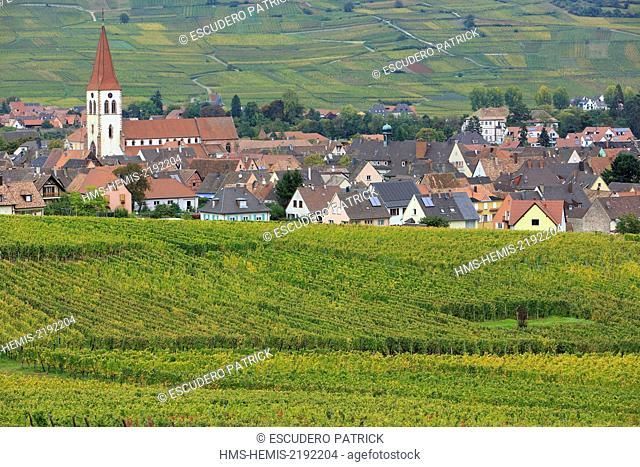 France, Haut Rhin, Route des Vins d'Alsace (Route of the wines of Alsace region), Ammerschwihr, general view of the village and vinyards
