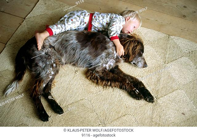 Boy with dog (German Longhaired Pointer)