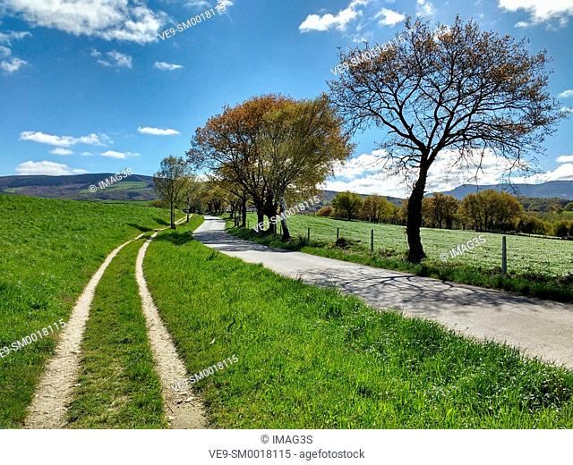 Track and road between Furela and Pintín villages, Lugo province, Spain