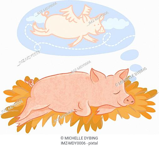 A pig dreaming of flying