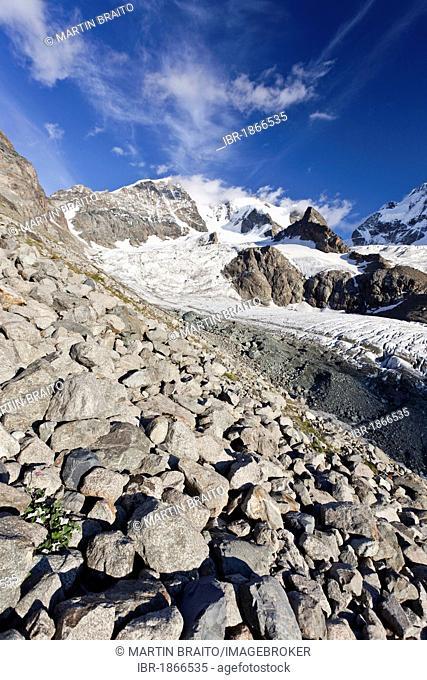 Ascent to Piz Morteratsch Mountain in front of the Bianco Ridge and Piz Bernina Mountain, Bernina Range, Grisons, Switzerland, Europe