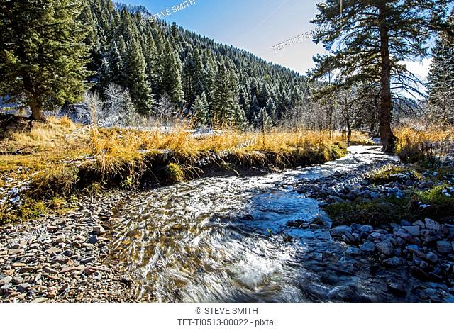River during winter in Sun Valley, Idaho