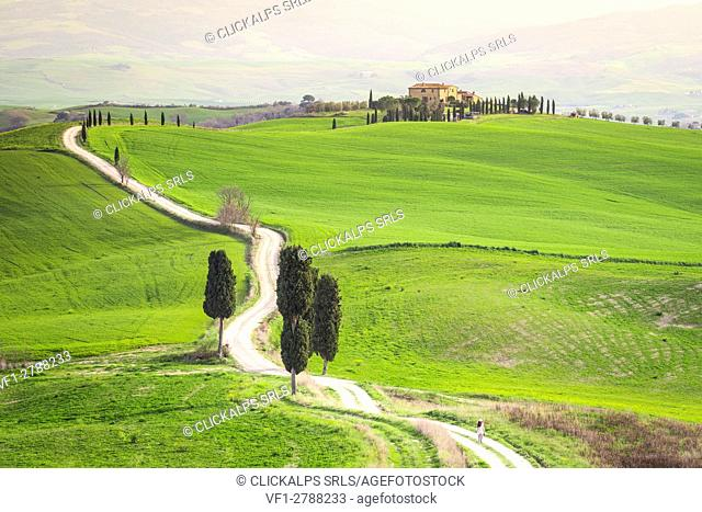 Podere Terrapille, Pienza, Val d'Orcia, Tuscany, Italy