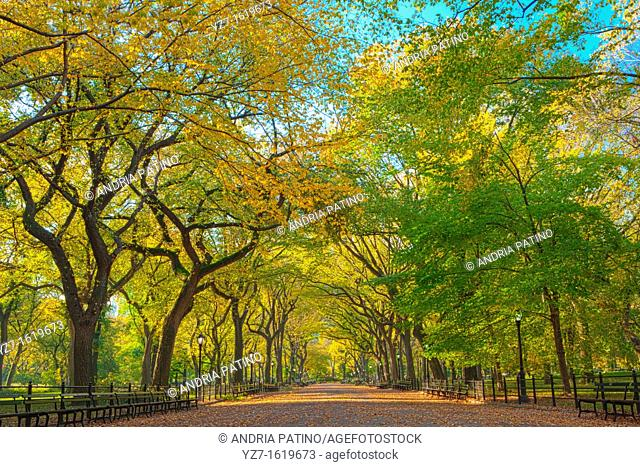 Literary Walk in Autumn colors, Central Park
