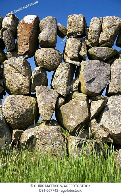 Dry stone wall made with granite boulders, southern Mull, Argyll and Bute, Scotland, UK