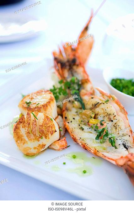 Lobster tail and scallops