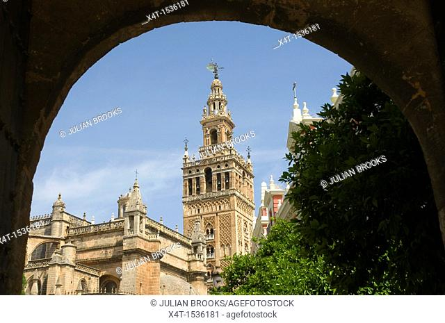 The Giralda tower in Seville, seen through the arch of the castle entrance