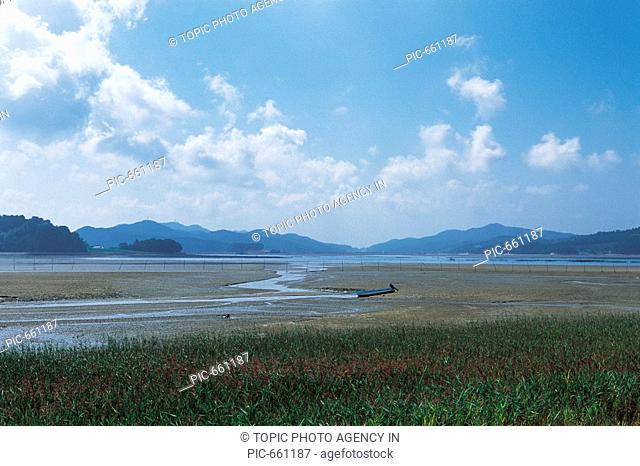 Foreshore,Taean-gun,Chungnam,Korea