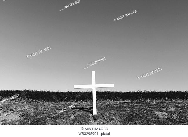 A cross on a hillside, a grave site in open country