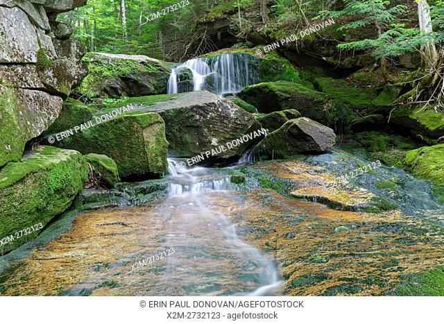 Cascade at Coldspur Ledges in Randolph, New Hampshire during the summer months. This small cascade is located at the confluence of Cold Brook and Spur Brook