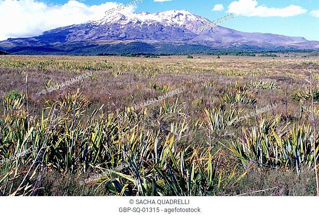 Mount Ruapehu, Tongariro National Park, North Island, New Zealand