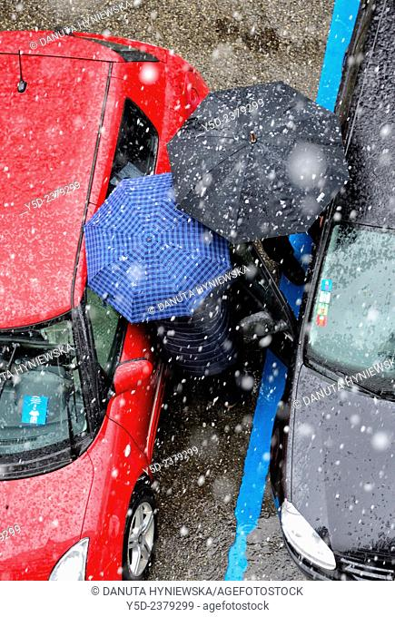 two persons under umbrellas in heavy snowfall trying to get into the car in parking lot, Geneva, Switzerland