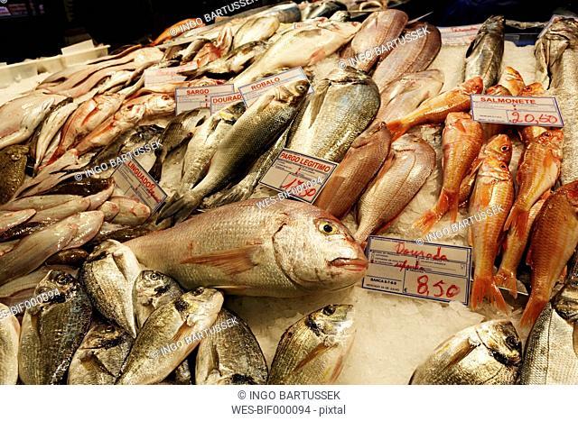 Portugal, Lisboa, Bica, Mercado da Ribeira Nova, view of fish stand