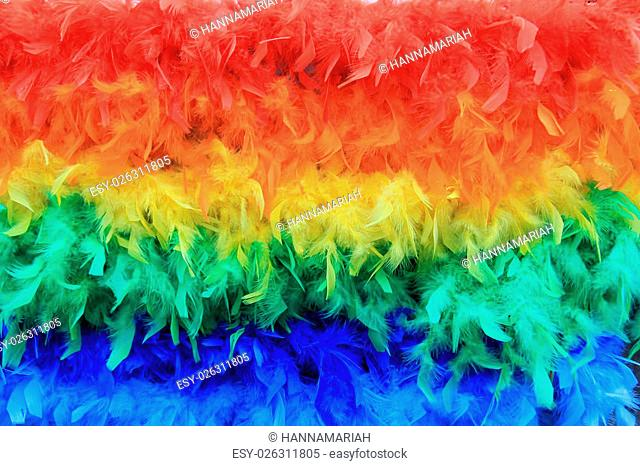 Rainbow colored feathers background