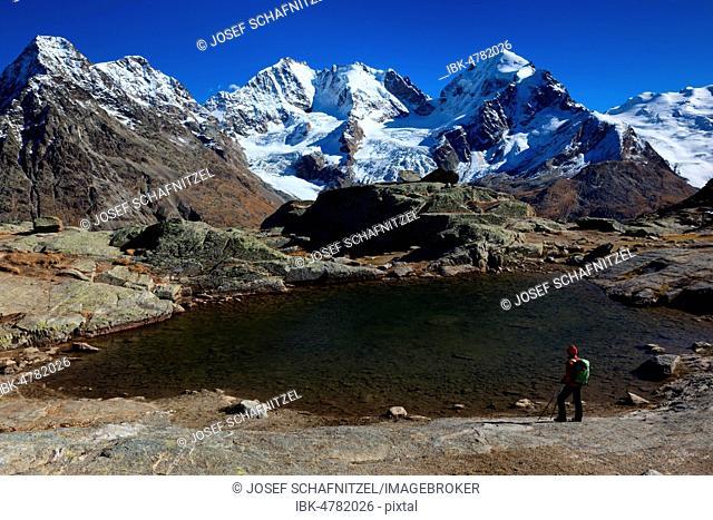 Woman, mountaineer, at Furorcla Surlej, behind Piz Morteratsch, Piz Bernina, Piz Scerscen, Piz Roseg, Berningruppe, Engadin, Canton Graubünden, Switzerland