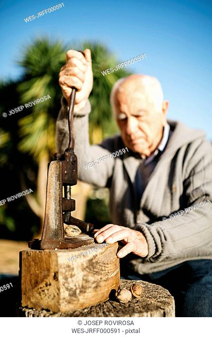 Senior man using an old tool for cracking walnuts