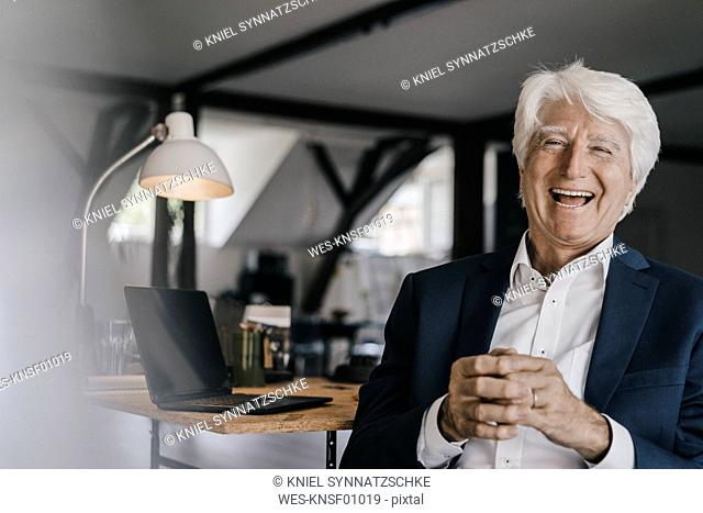 Portrait of laughing senior businessman in his office