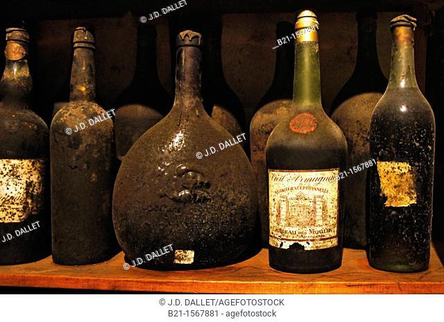 Very old Armagnac bottles in the 'paradis' of the Dartigalongue Armagnacs, Nogaro, Gers, Midi-Pyrenees, France