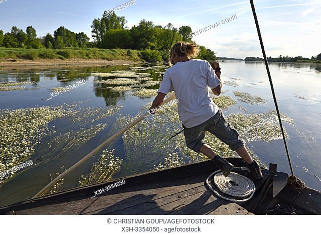 pilote degageant le bateau des bancs de renoncules des rivieres (Ranunculus fluitans), Balade en toue sur la Loire aux environs de Chaumont-sur-Loire