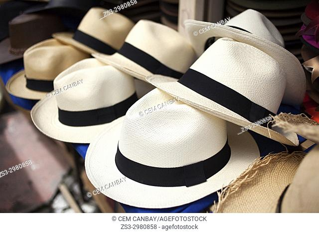 Panama hats for sale at the shop in town center, Otavalo, Quito, Ecuador, South America