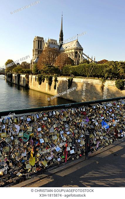 love padlocks on Pont de l'Archeveche with the Notre Dame Cathedral background, Ile de la Cite, Paris, Ile-de-France region, France, Europe