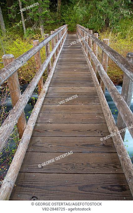 Hiker bridge over Fish Lake Creek along McKenzie River National Recreation Trail, Willamette National Forest, McKenzie Pass-Santiam Pass National Scenic Byway