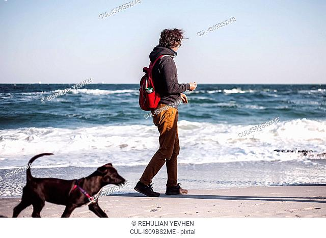 Mid adult man walking his dog along beach, Odessa, Odeska Oblast, Ukraine