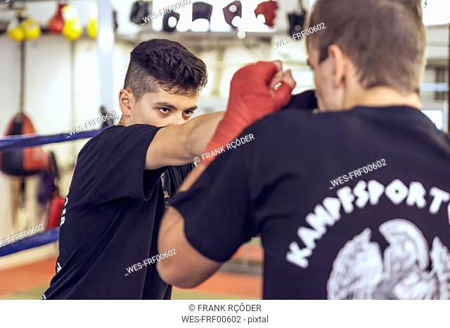 Two young martial artists fighting