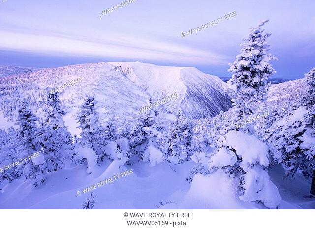 View of Mont Logan and snow-covered trees at dawn, Quebec, Canada