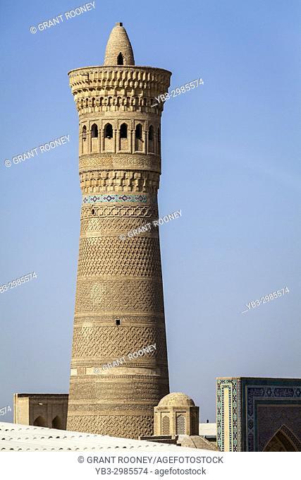 The Kalyon Minaret, Bukhara, Uzbekistan