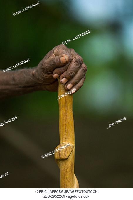 Chief walking stick cane in the Big Nambas tribe, Malampa Province, Malekula Island, Vanuatu