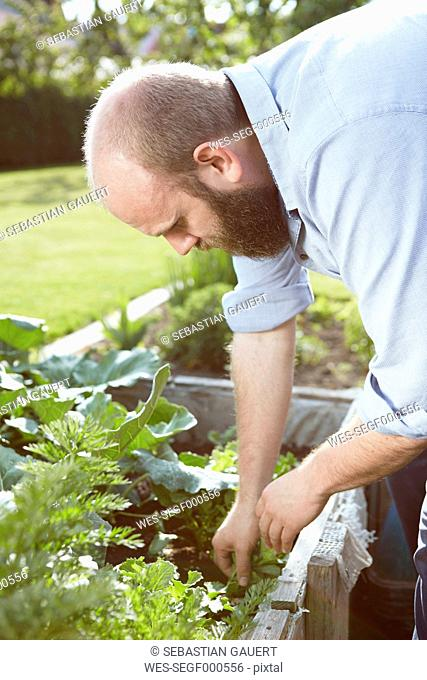Young man working in garden