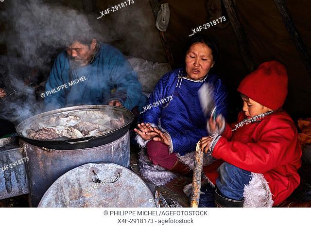 Mongolia, Khovsgol province, the Tsaatan, reindeer herder, the winter camp, cooking reindeer meat