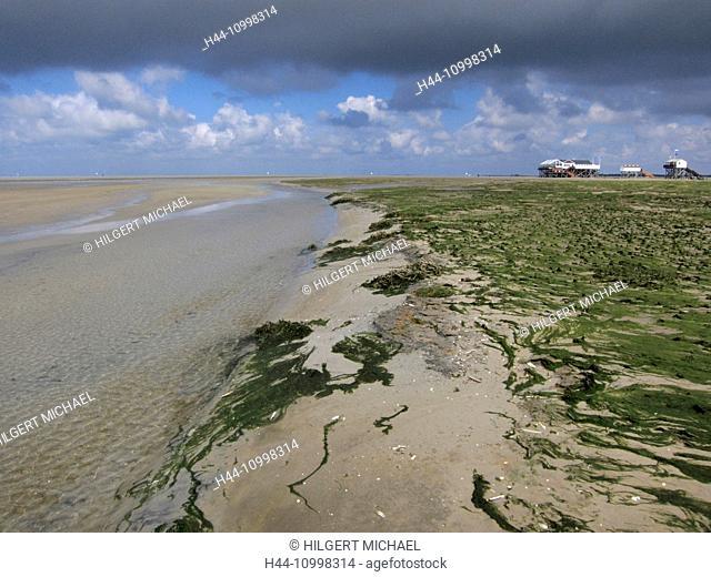 Wadden Sea in Schleswig Holstein