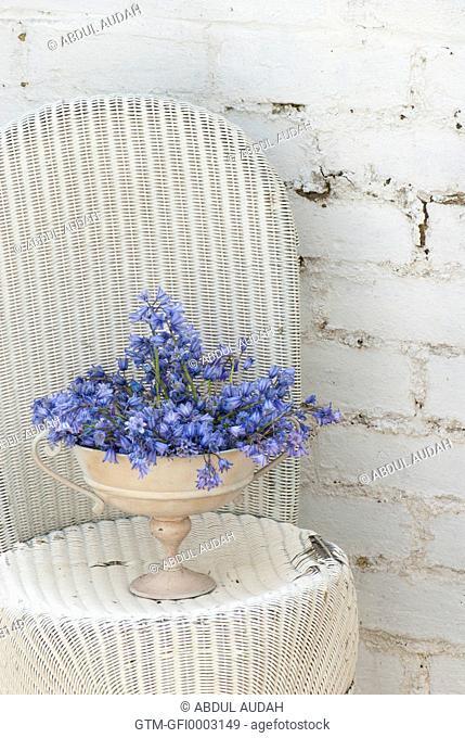 Bluebell arrangement in tin vase on white wicker chair against white brickwall