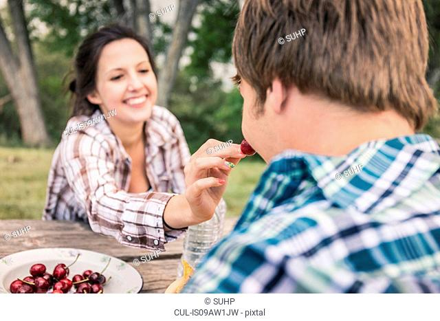 Over shoulder view of young woman feeding young man cherries at picnic table