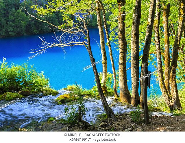 Plitvice Lakes National Park. Croatia, Europe